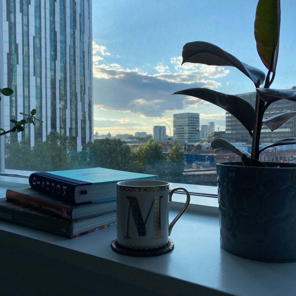 elephant and castle - image shows a view of london eye with a plant and mug in windowsill