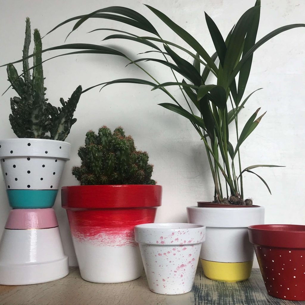 starting a side hustle | image shows a selection of painting plant pots and plants