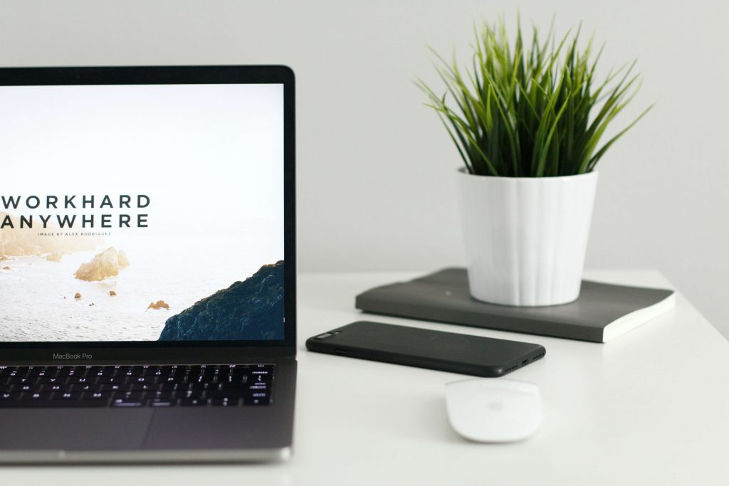 what companies look for when hiring | image shows a desk with a laptop and plant
