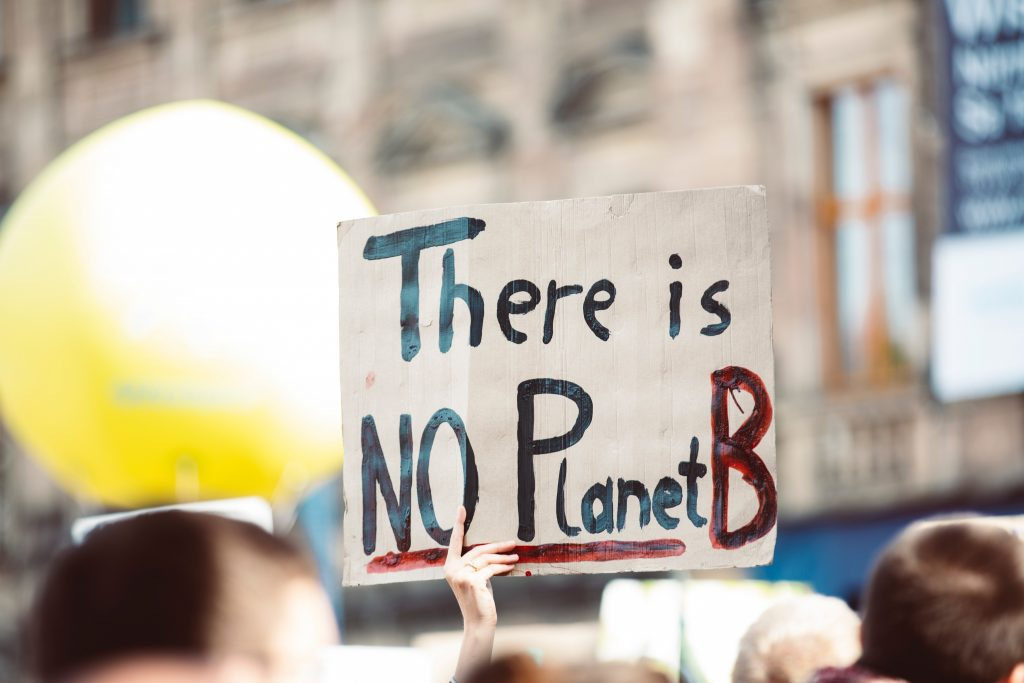 how to slow climate change | image shows a placard with 'there is no planet B' on it