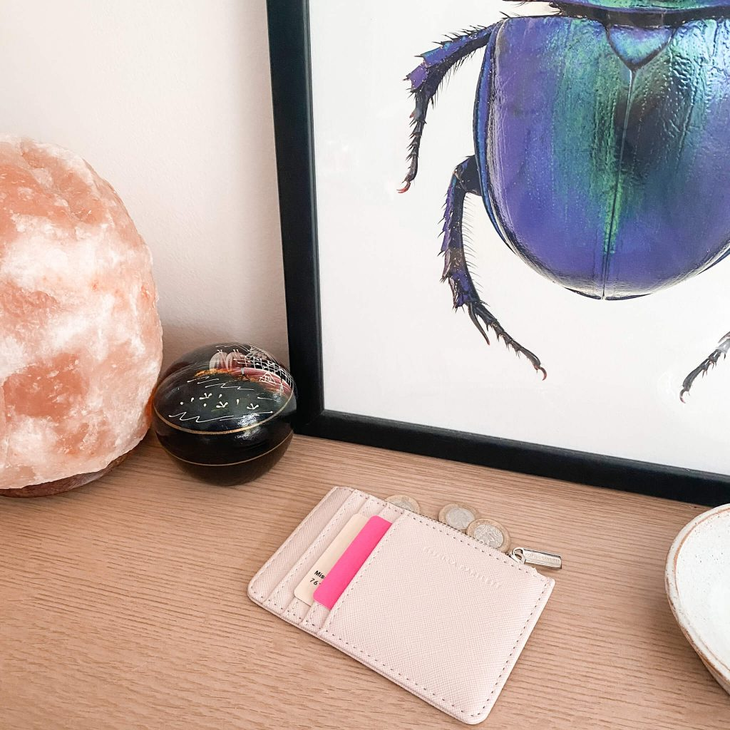 how to save money in your 20s | image shows a card holder, a salt rock lamp and a painting of an insect.